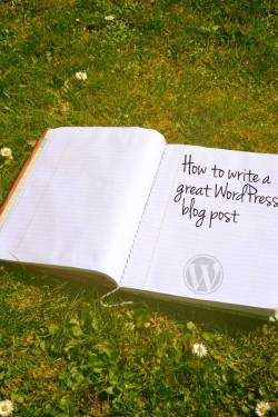 How to write your first WordPress blog post.