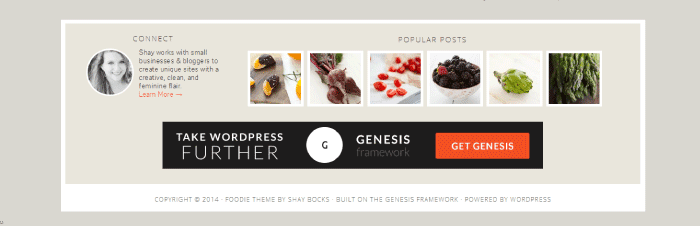 look at footer when choosing a theme