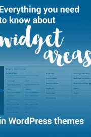 Widget areas allow you to easily add content to areas outside of your page and post content. Great explanation and examples of using WordPress widget areas.
