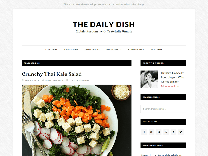 Daily Dish Pro Theme - best Genesis child theme for bloggers