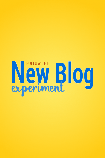 Hey blogger! Ever wonder: can you really make money blogging? How do you get more blog traffic? How do you get blog followers? Follow the New Blog Experiment to find out!